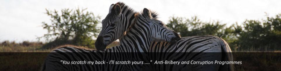 Anti Bribery Programmes