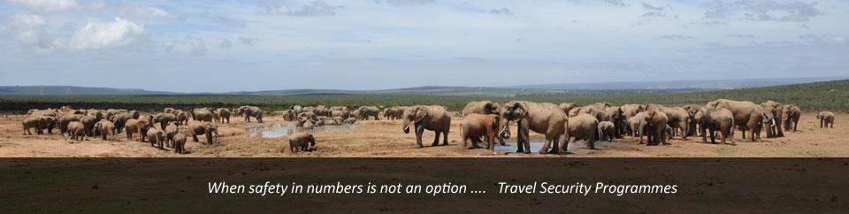 Travel Security Programmes